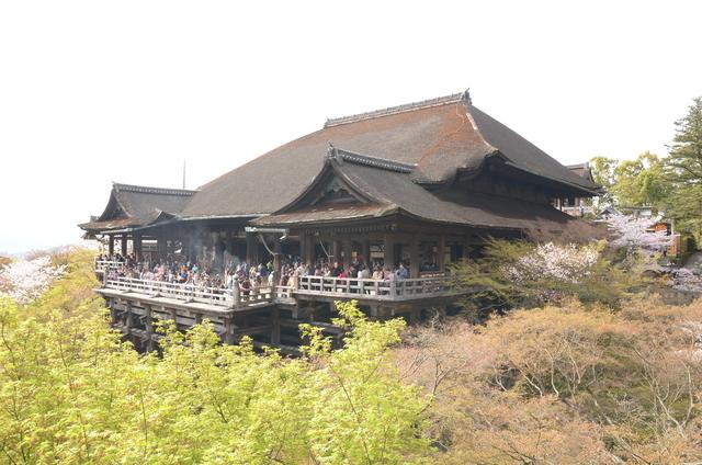 DSC_0928.JPG - 20160406-和櫻和服體驗、清水寺、祇園夜櫻