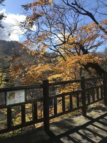 IMG_5822.JPG - day3 (11/01) : 日光