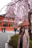 0405_伏見稻禾、鴨川、金閣寺、平野神社:DSC_0549.JPG