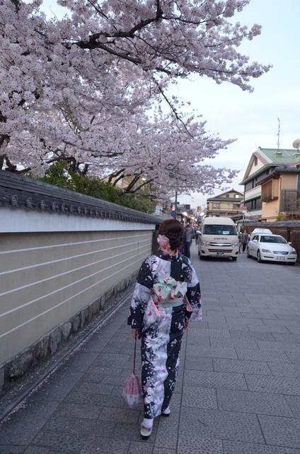 DSC_1052.JPG - 20160406-和櫻和服體驗、清水寺、祇園夜櫻