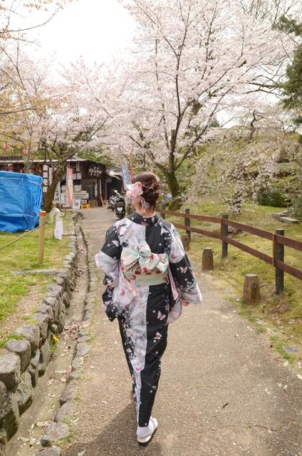 DSC_0775.JPG - 20160406-和櫻和服體驗、清水寺、祇園夜櫻
