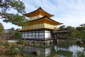 0405_伏見稻禾、鴨川、金閣寺、平野神社:DSC01035.JPG