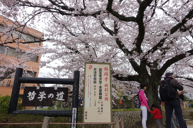 20160402_哲學之道、蹴上鐵道:DSC00580.JPG