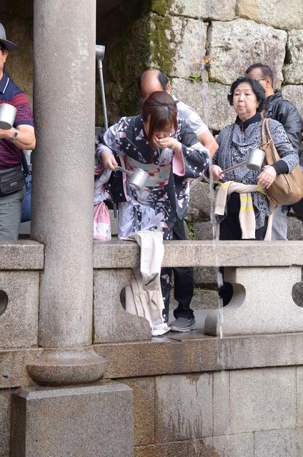 DSC_0973.JPG - 20160406-和櫻和服體驗、清水寺、祇園夜櫻