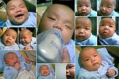 家裡的第一個小天使:20080505.jpg