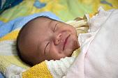 家裡的第一個小天使:DSC_0185.jpg
