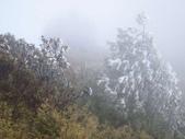 2012大霸雪季:IMG_0620-800.jpg