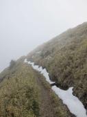 2012大霸雪季:IMG_0639-800.jpg