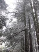 2012大霸雪季:IMG_0625-800.jpg