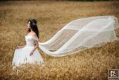 2016麥田婚紗。婚攝小紅莓:6W9A2998-1-2048.jpg