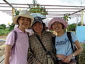 2009-6-20-梅岡區&梅英區郊遊:P1000371.jpg
