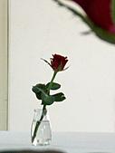 2010-8-21青春無悔:990821 027.jpg