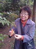 2009復活節彩蛋製作:001採花.jpg