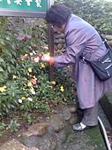 2009復活節彩蛋製作:002採花.jpg