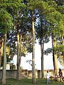 2010-12-11少契家庭生活營:991211d親子活動 (44).JPG