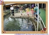 旅遊:DSC03621.jpg