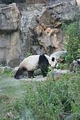【'11-0228】動物園之叁:IMG_5949.JPG