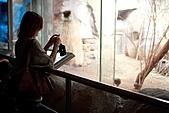 【'11-0228】動物園之貳:IMG_2839.JPG
