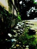 【'11-0811】 南投車埕隨便走:DSC06223.JPG