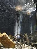【′11-0228】動物園:DSC05071.JPG