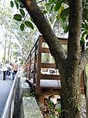 【′11-0228】動物園:DSC05079.JPG