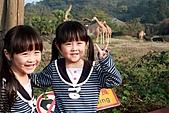 【'11-0228】動物園之貳:IMG_2855.JPG