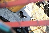 【'11-0305】我在侯硐第二彈之貳:IMG_2966.JPG