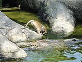 【′11-0228】動物園:DSC04971.JPG