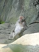 【′11-0228】動物園:DSC04973.JPG