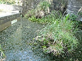 【′11-0228】動物園:DSC04975.JPG