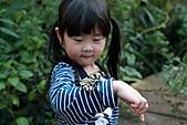 【'11-0228】動物園之貳:IMG_2802.JPG