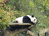 【′11-0228】動物園:DSC05138.JPG