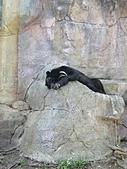 【′11-0228】動物園:DSC04958.JPG