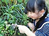 【′11-0228】動物園:DSC04995.JPG
