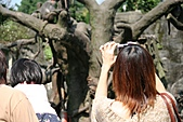 【'11-0228】動物園之叁:IMG_5624.JPG