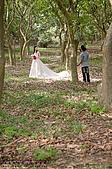 彥毅金陵 婚紗照側拍紀錄:981022-016.jpg