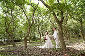 彥毅金陵 婚紗照側拍紀錄:981022-024.jpg