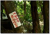 內獅瀑布:DSC_5309