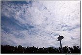 藍天白雲在高雄:980517-008.jpg