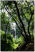 內獅瀑布:DSC_5302