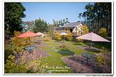 雲林古坑華山文學步道咖啡園露營:DSC_7737.jpg