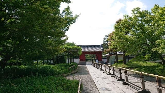 DSC_5005.JPG - 2019 京都