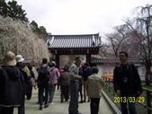 未分類相簿:醍醐寺1.jpg