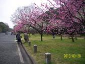 未分類相簿:京都御所13.jpg