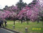未分類相簿:京都御所14.jpg