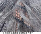 網誌用照片2:機器織假髮底網.jpg