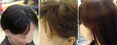 網誌用照片2:青山手工髮片使用後.jpg