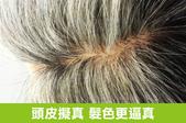 爸爸的手工假髮:青山假髮 手工假髮.jpg