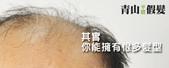 網誌用照片2:青山假髮髮片使用前.jpg