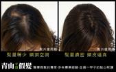 網誌用照片2:青山假髮手工髮片.jpg